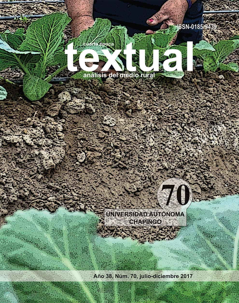 textualNo70